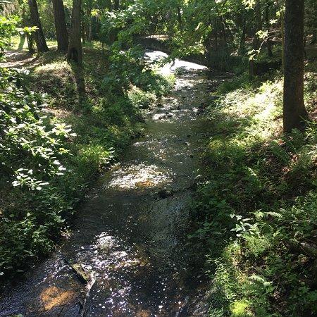 Wedgefield, SC: photo3.jpg