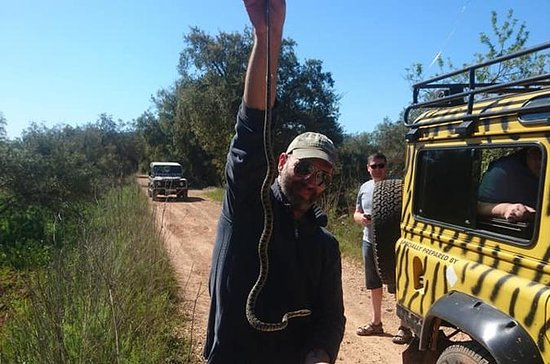 Private Custom Jeep Safari Tour from...