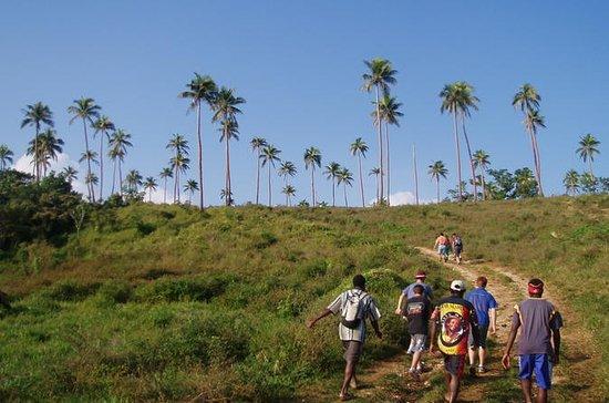 Ecotours Buschwanderung