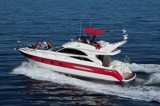 4-Hour Atlantic Seaboard Private...