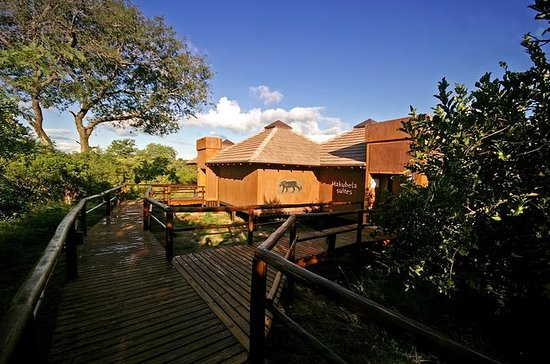 4Days Idube Game Reserve - Reserva de...