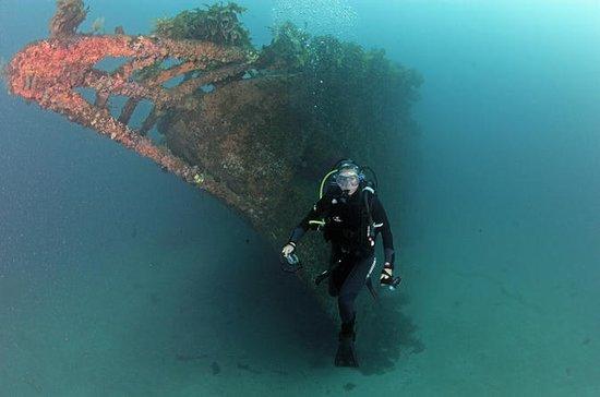 Rainbow Warrior Dive Charter