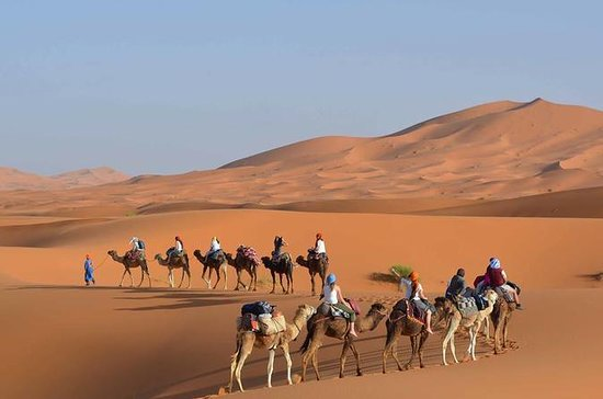 Fes To Fez Desert and Camel Trekking...