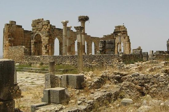 Day trip from Fes to Volubilis Moulay...