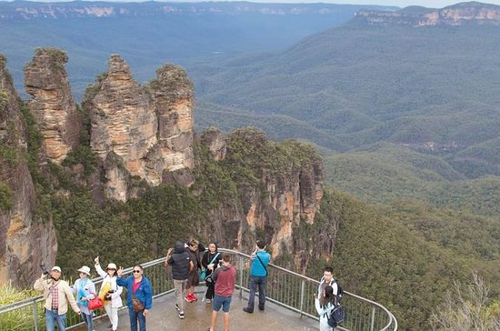 Blue Mountains et Wildlife Experience...