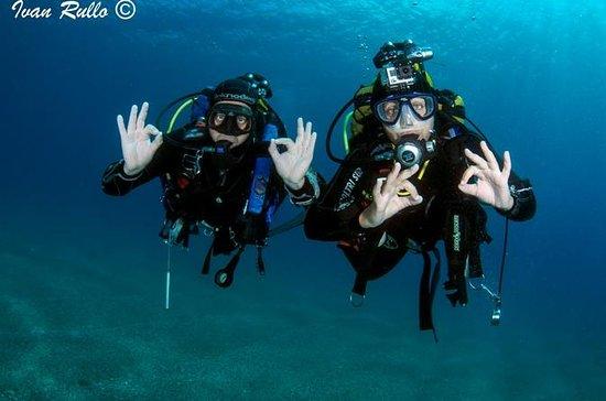 Immersioni subacquee in Calabria