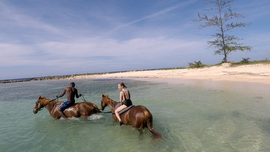 Braco Stables: Swimming