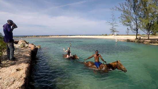 Braco Stables: Regular routes