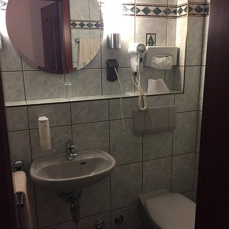 Trebur, Alemanha: Schön ausgestattetes Einzelzimmer. Das Bad mit Dusche und Seifenspendern sowie Fön.