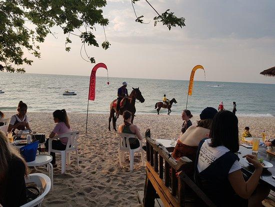 Bora Bora by Sunset: Beach view wit horse