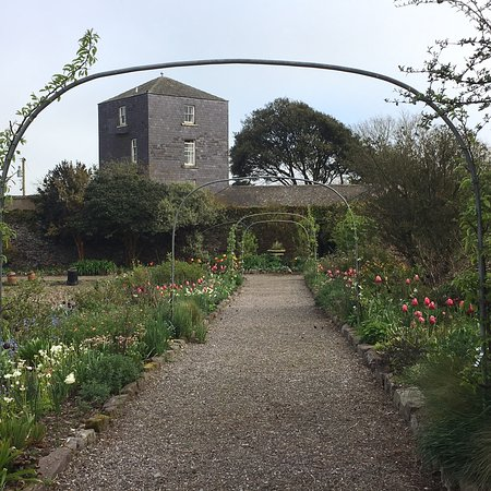Ballymaloe Gardens: photo7.jpg
