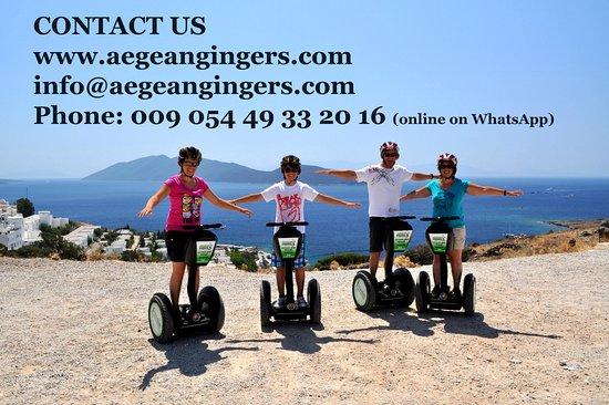 Aegean Gingers