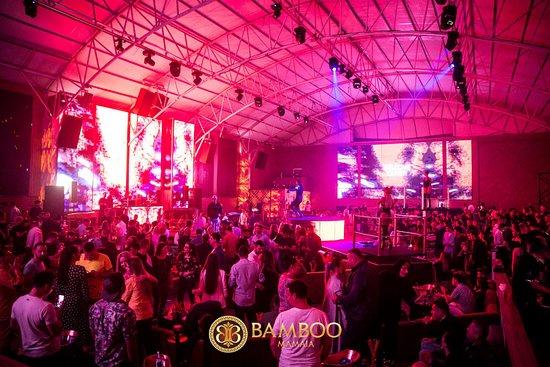 Bamboo Mamaia
