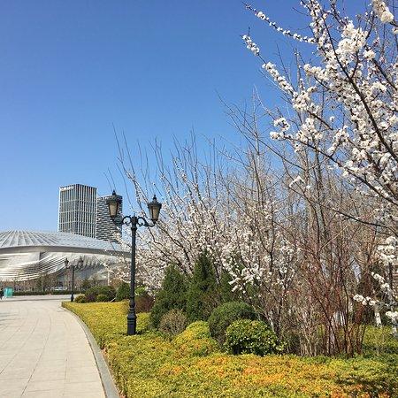 Dalian, China: 大连国际会议中心