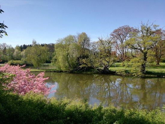 Haslev, Denemarken: haven