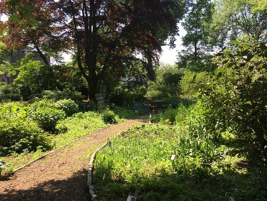 Botanische Tuin Rotterdam : Botanische tun afrikaanderwijk picture of botanische tuin