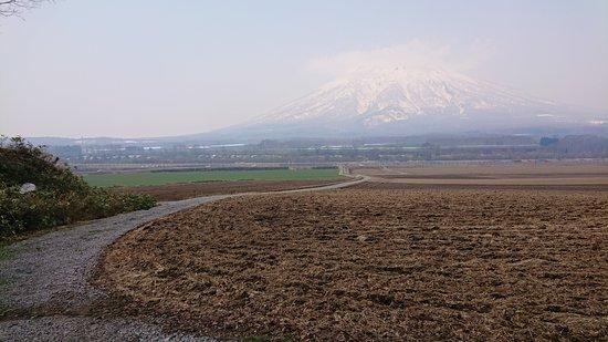 Shikotsu-Toya National Park, اليابان: 羊蹄山に続く道