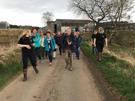 Aberdeenshire Highland Beef Farm Tour
