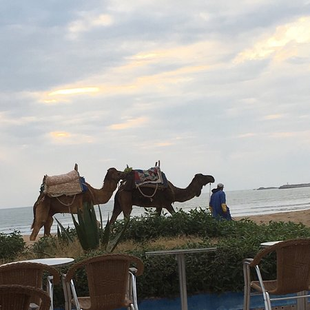 Essaouira Beach: photo2.jpg