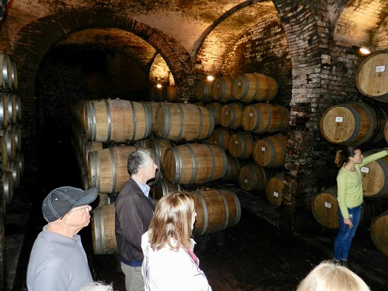 Abbadia di Montepulciano, Italie : Touring one of the aging caves