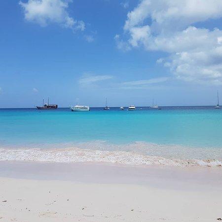 Browne's Beach : Beach Area