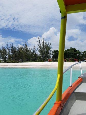 Browne's Beach : Boat ride for sea turtle excursion