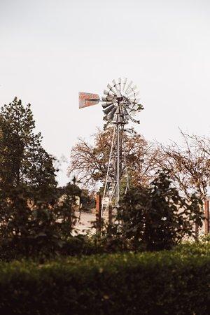 Creston, Kalifornien: Stella's Vineyard and windmill that provides water to the estate