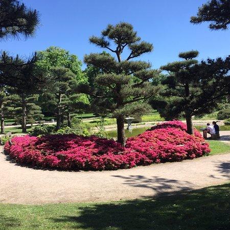 Photo0jpg Bild Von Japanischer Garten Düsseldorf Tripadvisor