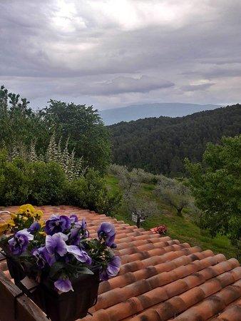 Cantalupo, Италия: IMG-20180508-WA0016_large.jpg