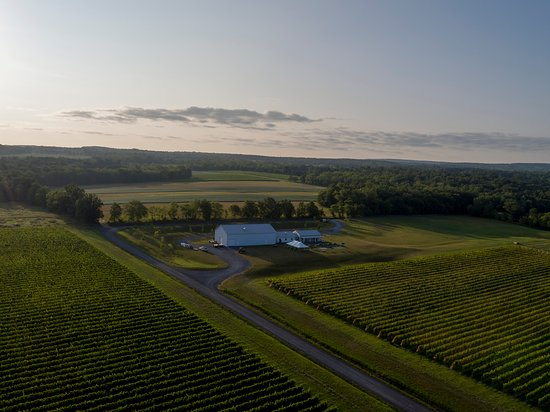 Lodi, Nowy Jork: Boundary Breaks from the air early on a September morning.