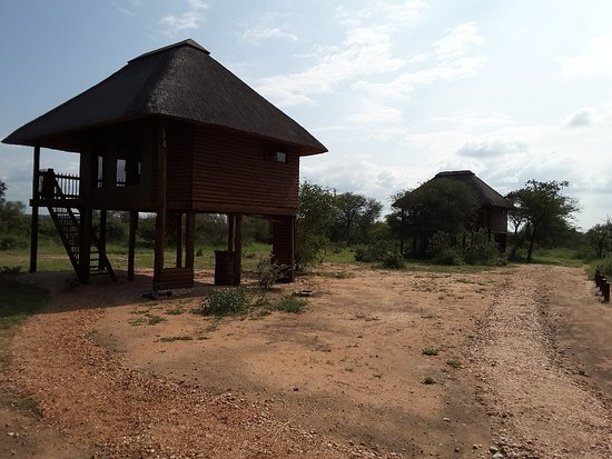 nThambo Tree Camp: 20180421_125212_large.jpg