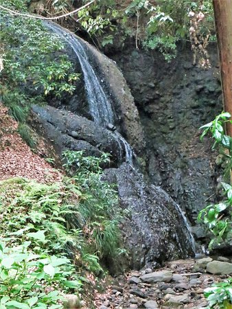 Kirifuri Waterfall