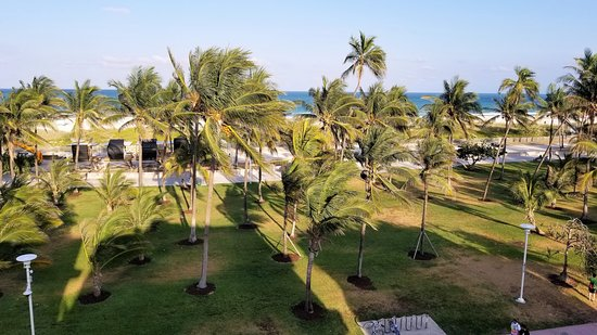 Crescent Resort On South Beach: From the rooftop terrace