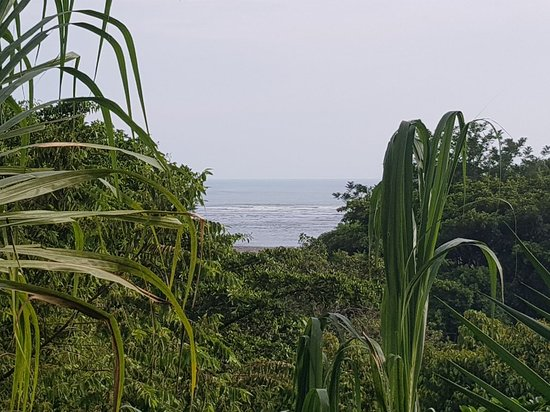 Playa Tortuga, Costa Rica: 20180428_162157_large.jpg