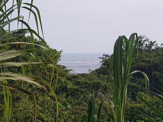Playa Tortuga, Kosta Rika: 20180428_162157_large.jpg