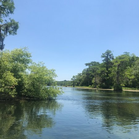 Edward Ball Wakulla Springs State Park Φωτογραφία