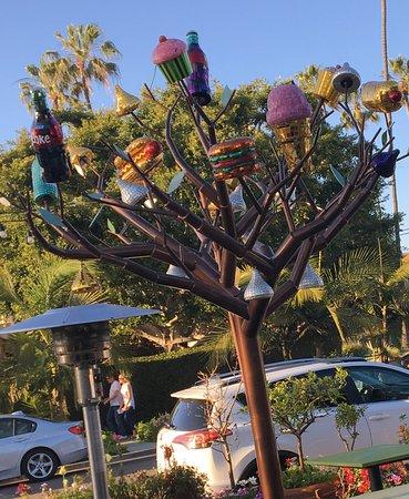 Barbarella Restaurant & Bar : The new tree in front of Barbarella's