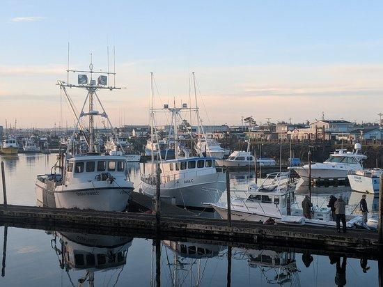 Img 20180506 062515 Large Jpg Picture Of Westport Marina
