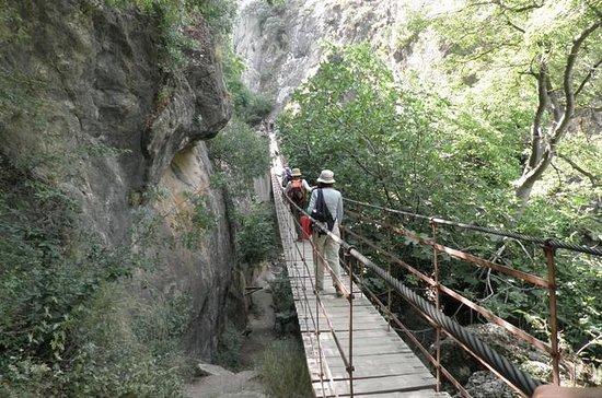 Sierra Nevada Natural Park Guided ...