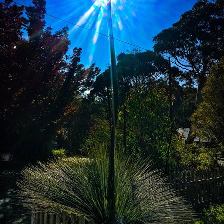 Blackheath, Australia: May Autumn colours en route to Perrys lookdown