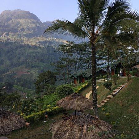 Ramboda, Sri Lanka: photo7.jpg