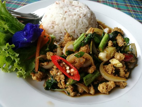 Khlong Sok, Thailand: Panang Curry / Stir fried chicken and Thai basil / Thai Iced tea