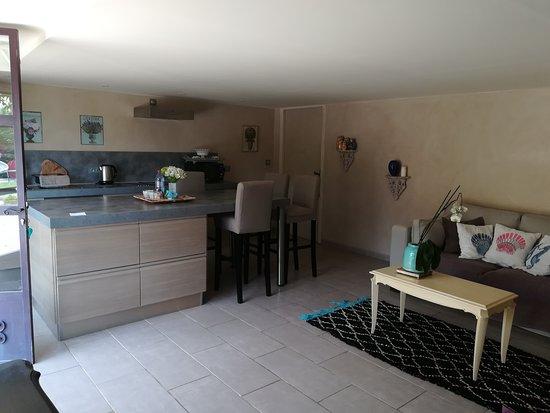 La Roquette-sur-Var, فرنسا: Espace cuisine dans la plus grande chambre