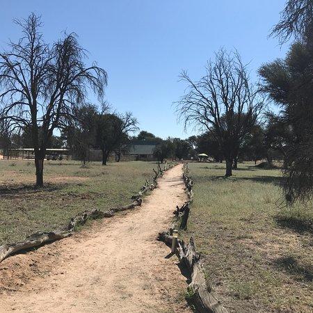 Kalahari game Lodge: photo1.jpg
