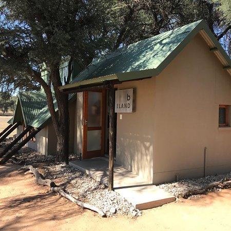 Die Löwen-Lodge