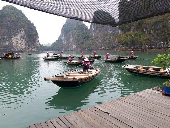 Asiatica Travel: Baia di Halong