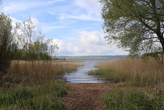 Somerset, UK: Chew Valley Lake