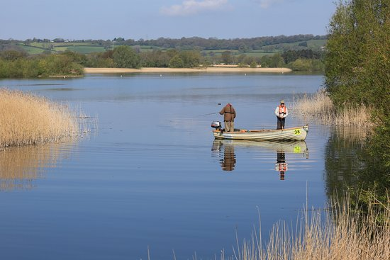 Somerset, UK: Fishing at Chew Valley Lake