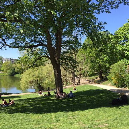 Super joli parc public en plein centre ville