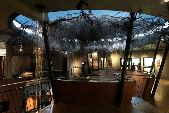 Het Museonder in Nationaal Park de Hoge Veluwe